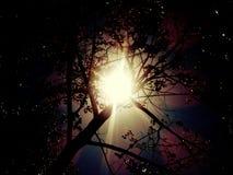 De zonsondergangzonsopgang van de zonlichtzon stock afbeelding