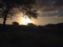 De zonsopgang in Hawaï is altijd aweasome stock afbeelding