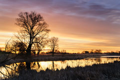 De zonsopgang met het gele branden betrekt over een wilde die vijver door bomen in de herfstochtend wordt omringd royalty-vrije stock fotografie