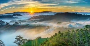 De zonsopgang over helling als zon die van horizon toenemen wijst op lichte heldere gele hemel royalty-vrije stock fotografie