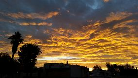De zonsopgang van Arizona Stock Foto's