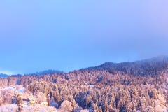 De Zonsopgang van de winter Stock Fotografie