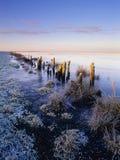 De zonsopgang van de winter, het moerasland van Banken Stock Foto