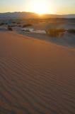 De Zonsopgang van de woestijn Stock Fotografie