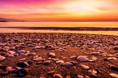 De zonsopgang van de zomer Stock Afbeelding