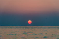 De zonsopgang van de zomer Stock Foto's
