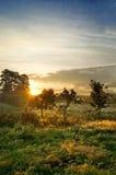 De zonsopgang van het platteland Stock Afbeeldingen