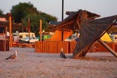 De zonsopgang van Vamaveche Roemenië op het strand Stock Afbeeldingen