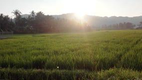 De zonstijging in Aceh Royalty-vrije Stock Afbeeldingen