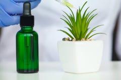 De zorg van de huid Kosmetische het laboratorium organische huid van de wetenschaps holistic installatie royalty-vrije stock afbeelding
