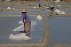 De zoute landbouwer stock afbeeldingen