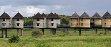 De zoute lik brengt hotelaanpassing, Taita-Heuvels, Kenia onder stock foto's