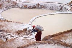 De zoute terrassen van Moray, Peru Stock Afbeelding