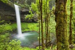 De zuidendalingen van het Zilver valt het Park van de Staat, Oregon, de V.S. Royalty-vrije Stock Afbeeldingen