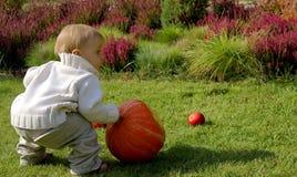 De zuigeling van de baby met pompoen Stock Fotografie
