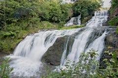De zuivere en koude bergrivier loopt tussen rotsachtige stenen en stroomt in waterval Royalty-vrije Stock Fotografie