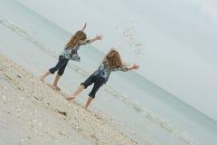 De zusterzeeschelpen van de zomer royalty-vrije stock foto