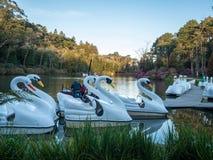 De zwaanboten wachten op passagiers voor een korte reis in het meer stock foto's