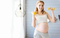 De zwangere domoren van de vrouwenholding in haar handen Royalty-vrije Stock Afbeelding