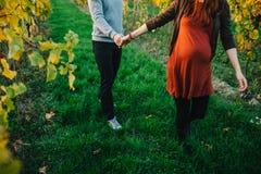 de zwangere vrouw en haar echtgenoothand dienen langs wijngaarden in Royalty-vrije Stock Afbeeldingen