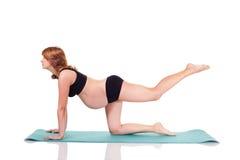 De zwangere yoga van de vrouwenoefening Royalty-vrije Stock Foto's
