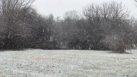 De zware Achtergrond van het Sneeuwlandschap stock footage