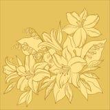 De zwart-wit achtergrond van de bloem, Royalty-vrije Stock Afbeeldingen