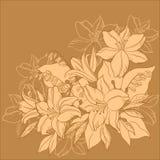 De zwart-wit achtergrond van de bloem, Stock Foto