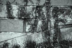 De zwart-wit Grunge-baksteen schilderde blokmuur royalty-vrije stock fotografie