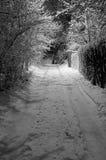 De zwart-wit nacht van de winter, Stock Foto