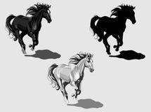 De zwart-wit paarden van Runnning, Royalty-vrije Stock Afbeeldingen