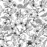 De zwart-witte botanische bloemen in de tuin overhandigen getrokken door pe royalty-vrije illustratie
