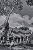 De zwart-witte Foto van Angkor Wat Royalty-vrije Stock Foto's