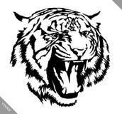 De zwart-witte inkt trekt tijger vectorillustratie Royalty-vrije Stock Fotografie
