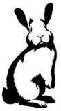 De zwart-witte lineaire verf trekt konijnillustratie Stock Fotografie