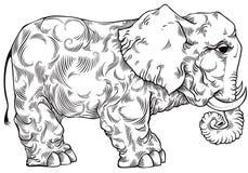 De zwart-witte tekening van de olifant. Royalty-vrije Stock Afbeeldingen