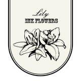 De zwarte bloem van de de stijlschets van de inktlijn Lilly geschilderde hand vector illustratie