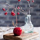 De zwarte en rode gekarameliseerde appelen van Halloween Stock Afbeelding