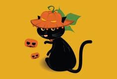De zwarte hoed van de kattenpompoen Stock Afbeeldingen