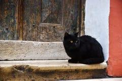 De zwarte Kat zit in Front Of An Old Wooden-Deur Stock Afbeelding