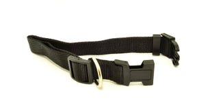 De Zwarte kraag van de hond Royalty-vrije Stock Foto's