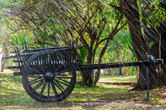 De zwarte oude kar op groen gras met vele installaties in het tuin en plonswater als voorgrond Stock Fotografie