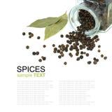 De zwarte peper van kruiden Stock Fotografie