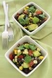 De zwarte salade van de boonavocado Stock Afbeeldingen