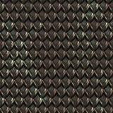 de zwarte schalen van de draakhuid Stock Foto
