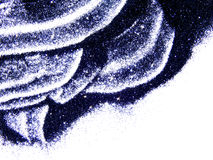 De zwarte schittert fonkeling op witte achtergrond met ruimte voor tekst Royalty-vrije Stock Afbeelding