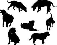 De zwarte silhouetten van Labrador. Royalty-vrije Stock Afbeeldingen