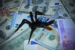 De zwarte spin zit op dollar en euro bankbiljetten stock afbeeldingen