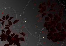 De zwarte van bloemen Royalty-vrije Stock Foto's