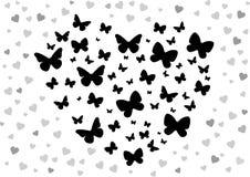 De zwarte van de vlinder Stock Foto
